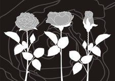 róż sylwetki royalty ilustracja