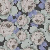 Róża bezszwowy Wzór Fotografia Royalty Free