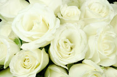 Róża biały bukiet Obrazy Royalty Free