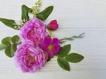 Róża bukieta piękna rama świąteczna na białym drewnianym tle Zdjęcia Royalty Free