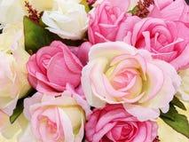 Róża kwiatów tło Obraz Stock