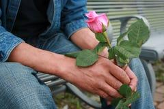 Róża myśl Zdjęcia Stock