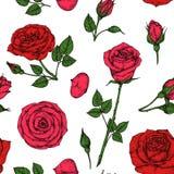 Róża wzór Czerwony okwitnięcie wzrastał kwiatu bukiet Kwiecisty bezszwowy wektorowy rysunku wzór royalty ilustracja