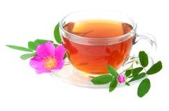 Różana modna herbata Zdjęcia Stock