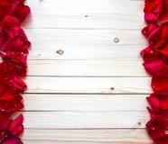 Różana płatek granica Fotografia Stock