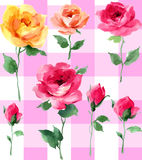 Różanej akwareli bezszwowy deseniowy Impresjonujący obraz olejny na białej ziemi ilustracja wektor
