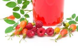 Różani biodra, malinki i owocowa herbata na białym tle, Zdjęcia Stock