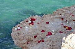 Różani płatki Obok morza Obrazy Stock