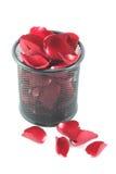 Różani płatki w koszu odizolowywającym na białym tle Zdjęcia Royalty Free