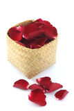 Różani płatki w koszu odizolowywającym na białym tle Fotografia Royalty Free