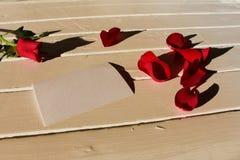 Różani płatki z wzrastali Zdjęcia Royalty Free