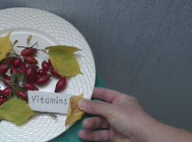 Różany biodro I ręka Zdjęcie Royalty Free