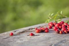 Różany biodro na drewnianym stołowym szczególe Zdjęcie Stock