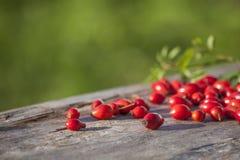 Różany biodro na drewnianym stołowym szczególe Fotografia Stock