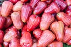 Różany jabłczany tropikalnej owoc sprzedawanie w rynku dla zdrowia jedzenia i rolnictwa pojęcia projekta zdjęcia royalty free