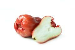 Różany jabłko zdjęcie royalty free