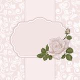 różany karta rocznik Elegancki ozdobny tło z bezszwowym wzorem Obraz Stock
