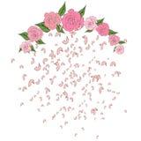 Różany płatków spadać, lata od półcyrkłowego łuku róże z liśćmi, czułość, ślubny tło Fotografia Royalty Free