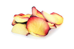 różany płatka kolor żółty obrazy stock