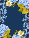 Róże, hortensja kwiatu akwareli ramy skład Obraz Stock