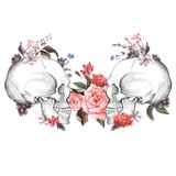 Róże i czaszka, dzień nieboszczyk, wektor Obrazy Royalty Free