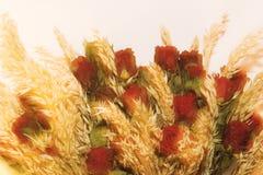 Róże i słoma obraz stock