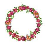Róże kwitną romantyczną ramę z motylami na białym tle Zdjęcia Stock