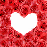 róże miłości. Zdjęcia Royalty Free