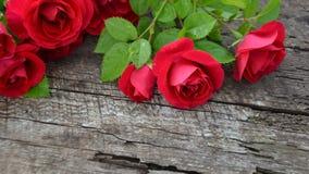 Róże na drewnianym tle z pęknięciami Fotografia Stock