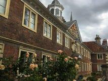 Róże na historycznym budynku w centrum Salisbury obrazy stock
