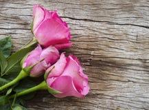 Róże na starej drewnianej desce, walentynka dnia tło, ślubny da Fotografia Stock