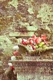 Róże na starym grobowu obraz stock