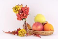 Róże od jesieni owoc i liści Fotografia Royalty Free