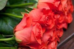 róże pomarańczowe Zdjęcia Stock