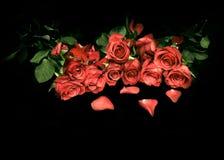 Róże są czerwone mój miłość Obrazy Royalty Free