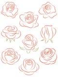 róże ustawiać Zdjęcia Royalty Free