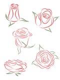 róże ustawiają Obrazy Royalty Free