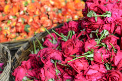 Róże w koszu dla sprzedaży zdjęcie stock