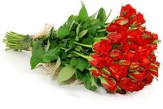 róże wiązek Zdjęcie Royalty Free