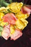 róże więdli Zdjęcia Royalty Free