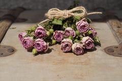 róże więdną Obraz Royalty Free