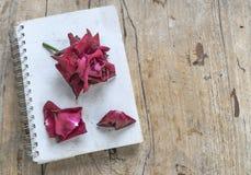 Róże z książką na drewnianej podłoga Obraz Royalty Free