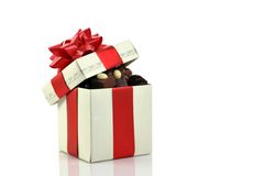 różna pudełkowata czekolada obraz royalty free