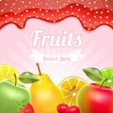 Różne owoc Truskawkowy dżem na wierzchołku ilustracja wektor