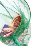 Różne waluty łapać w sieci rybackiej zdjęcie stock