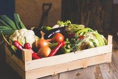 Różni lokalni warzywa na drewnianym wieśniaka stole jakby Organic Jedzenia pojęcie Stonowany obrazek Zdjęcia Royalty Free