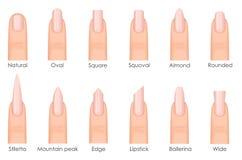 Różni moda gwoździa kształty Ustawia rodzaje gwoździe Moda przybija typ trend ilustracja wektor