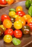 Dziecko śliwkowi pomidory obraz royalty free