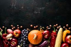 Różni sezonowi jesieni warzywa, owoc na zielony drewnianym i fotografia royalty free