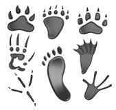 Różni typ odciski stopy odizolowywający na białym tle 3D r Zdjęcie Royalty Free